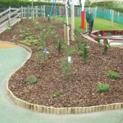 1_school-landscaping-1